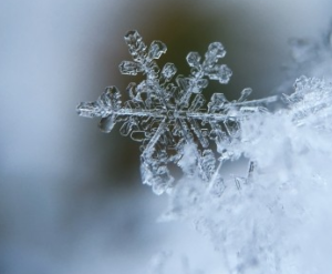 crystal-iced-icing